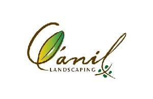 Qanil-cliente-expandim-50-min